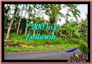 Affordable PROPERTY TABANAN BALI 7,200 m2 LAND FOR SALE TJTB226