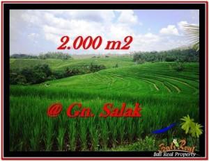 Exotic PROPERTY 2,000 m2 LAND SALE IN TABANAN BALI TJTB227