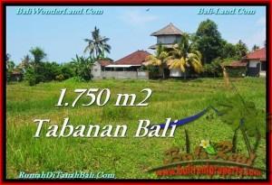 Affordable LAND IN Tabanan Selemadeg BALI FOR SALE TJTB231