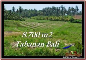 Magnificent LAND SALE IN Tabanan Selemadeg BALI TJTB233
