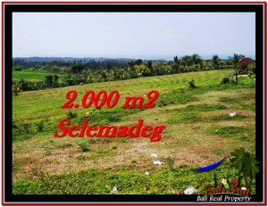 Exotic PROPERTY 2,000 m2 LAND SALE IN TABANAN BALI TJTB228
