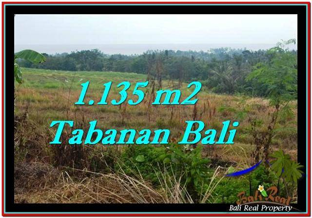 Beautiful PROPERTY 1,135 m2 LAND FOR SALE IN Tabanan Selemadeg TJTB253