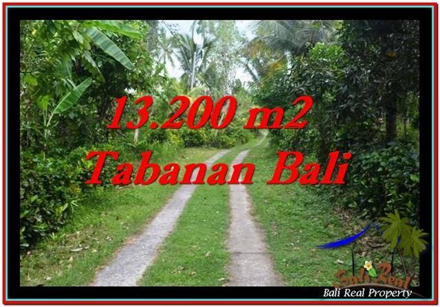 TABANAN 13,200 m2 LAND FOR SALE TJTB255