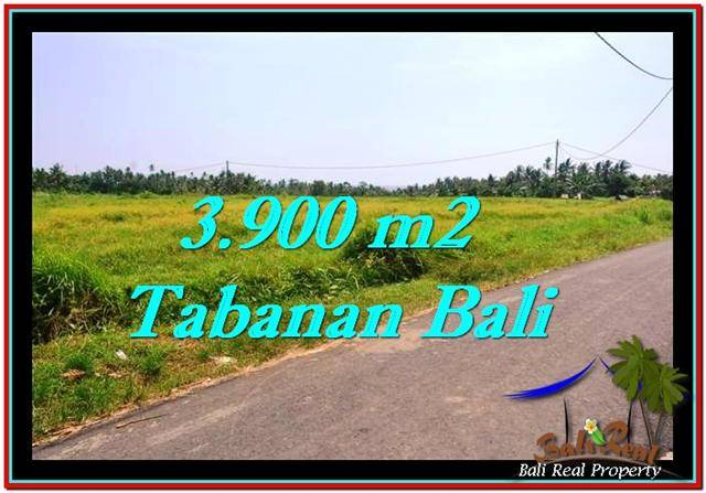 Magnificent 3,900 m2 LAND FOR SALE IN TABANAN BALI TJTB258