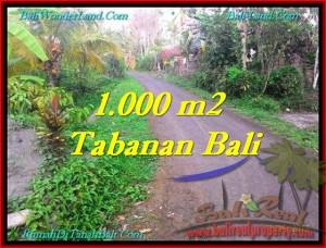 Beautiful LAND SALE IN Tabanan Selemadeg BALI TJTB242
