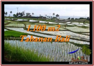 Exotic PROPERTY 1,100 m2 LAND SALE IN TABANAN BALI TJTB248