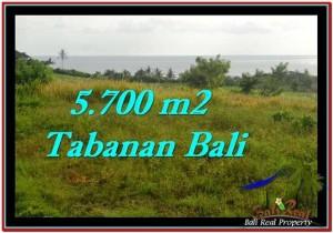 Beautiful PROPERTY 5,700 m2 LAND FOR SALE IN Tabanan Selemadeg TJTB250