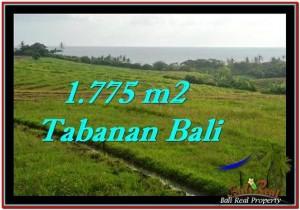Exotic Tabanan Selemadeg BALI LAND FOR SALE TJTB251