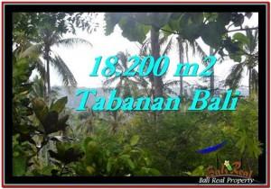 Magnificent LAND SALE IN Tabanan Selemadeg BALI TJTB254