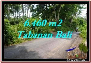 Beautiful 6,460 m2 LAND IN TABANAN BALI FOR SALE TJTB256