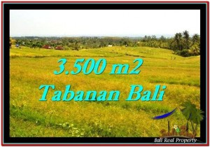 Exotic PROPERTY LAND FOR SALE IN TABANAN TJTB259