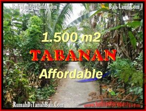 FOR SALE Magnificent 3,000 m2 LAND IN TABANAN BALI TJTB159