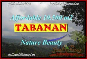 10,500 m2 LAND IN TABANAN BALI FOR SALE TJTB165