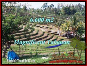 FOR SALE Beautiful PROPERTY LAND IN TABANAN TJTB204