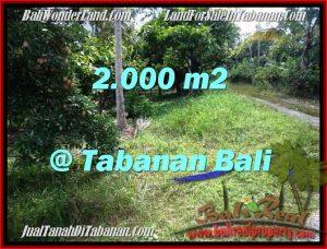 FOR SALE Beautiful 2,000 m2 LAND IN TABANAN BALI TJTB206