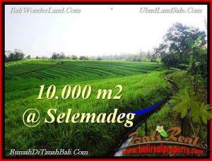 Exotic PROPERTY Tabanan Selemadeg 10,000 m2 LAND FOR SALE TJTB217