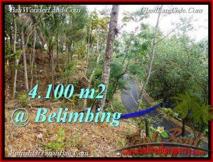 Magnificent PROPERTY 4,100 m2 LAND SALE IN Tabanan Selemadeg TJTB218