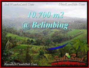 FOR SALE Beautiful PROPERTY 10,700 m2 LAND IN Tabanan Selemadeg TJTB219