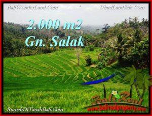 FOR SALE LAND IN Tabanan Selemadeg BALI TJTB220