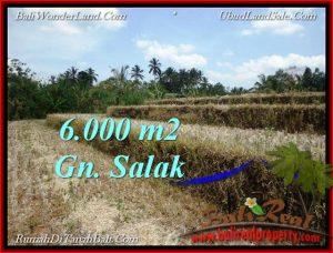 6,000 m2 LAND IN TABANAN BALI FOR SALE TJTB221