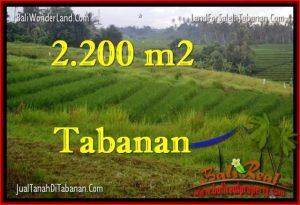 Exotic Tabanan Selemadeg BALI LAND FOR SALE TJTB269