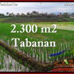 Affordable PROPERTY TABANAN BALI 2,400 m2 LAND FOR SALE TJTB263