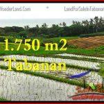 Exotic PROPERTY 1,775 m2 LAND SALE IN TABANAN BALI TJTB264