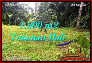 Beautiful TABANAN BALI 1,200 m2 LAND FOR SALE TJTB278