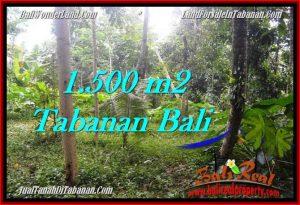 FOR SALE Affordable 1,500 m2 LAND IN TABANAN TJTB279