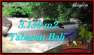 Beautiful PROPERTY Tabanan Selemadeg 3,150 m2 LAND FOR SALE TJTB282