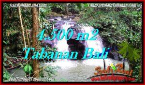 Affordable PROPERTY LAND FOR SALE IN TABANAN TJTB283