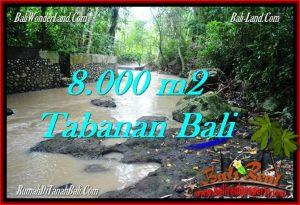 Exotic LAND SALE IN Tabanan Selemadeg BALI TJTB287