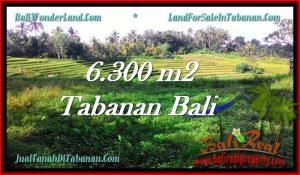 Beautiful TABANAN BALI 6,300 m2 LAND FOR SALE TJTB275