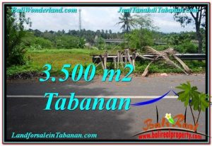 Magnificent 3,500 m2 LAND FOR SALE IN TABANAN BALI TJTB298
