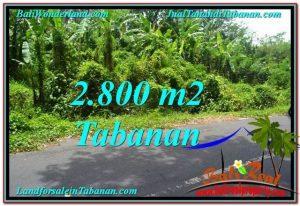 Affordable PROPERTY TABANAN BALI 2,800 m2 LAND FOR SALE TJTB300