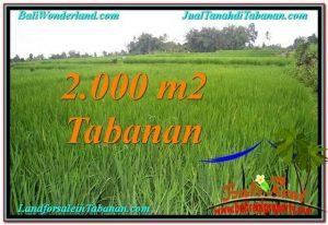Beautiful PROPERTY 2,000 m2 LAND FOR SALE IN Tabanan Penebel TJTB303