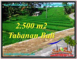 Affordable LAND IN Tabanan Penebel BALI FOR SALE TJTB305