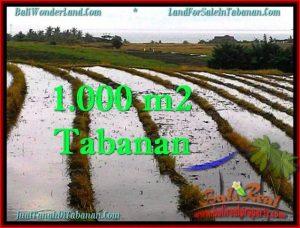 Magnificent LAND SALE IN Tabanan Selemadeg BALI TJTB261