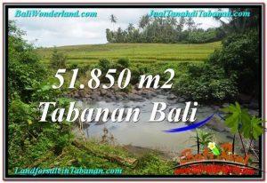 Beautiful 51,850 m2 LAND IN TABANAN BALI FOR SALE TJTB289