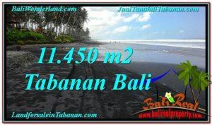 Exotic PROPERTY 11,450 m2 LAND SALE IN TABANAN BALI TJTB291