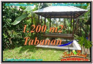 LAND FOR SALE IN Tabanan Penebel BALI TJTB294