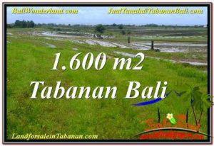 LAND FOR SALE IN TABANAN TJTB310