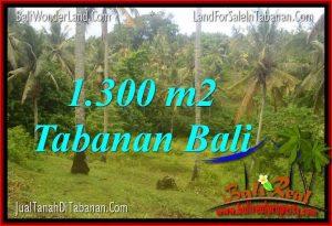LAND IN Tabanan Selemadeg FOR SALE TJTB314