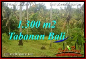 Affordable PROPERTY LAND FOR SALE IN Tabanan Selemadeg BALI TJTB314