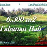 FOR SALE Affordable LAND IN Tabanan Selemadeg BALI TJTB275