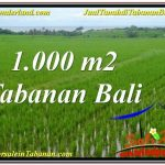 Beautiful PROPERTY TABANAN 1,000 m2 LAND FOR SALE TJTB307