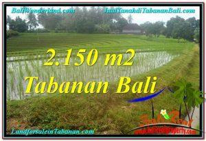 TABANAN BALI LAND FOR SALE TJTB312