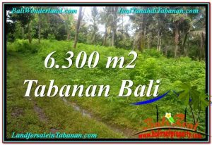 Magnificent PROPERTY LAND FOR SALE IN TABANAN BALI TJTB313
